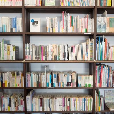 Nauczyciel bibliotekarz a nowa podstawa programowa