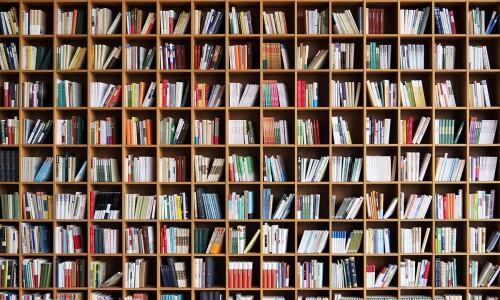 Co się robi w bibliotece?
