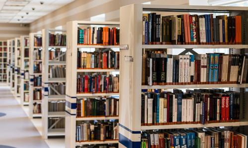 Niektóre problemy w bibliotekach w roku szkolnym 2018/2019