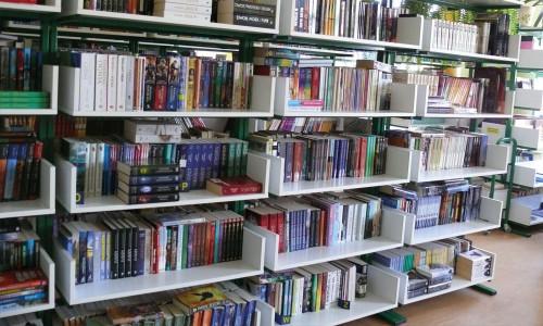 Porządek w bibliotece – jak poradzić sobie z odkurzaniem książek?