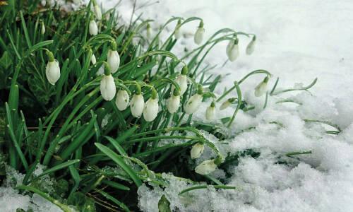 Wiosno, czekamy na ciebie!