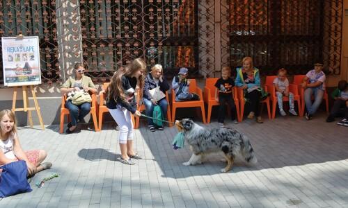 Biblioteka – ZOOteka, czyli lato wśród zwierząt
