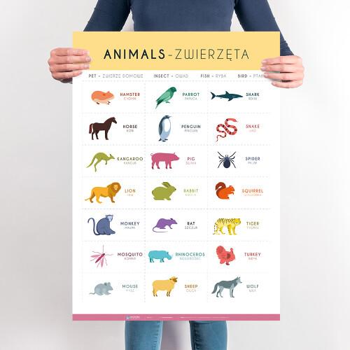 Angielski – słówka – zwierzęta – cz. 2