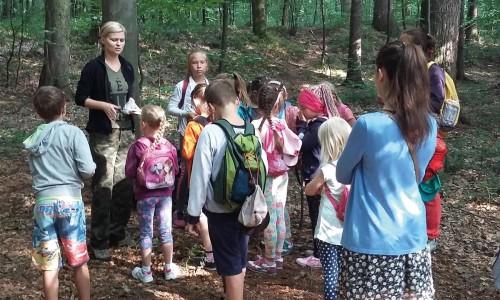Biblioteczna lekcja w środku lasu