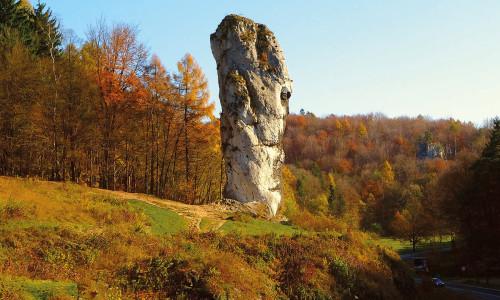 Magia polskiej przyrody