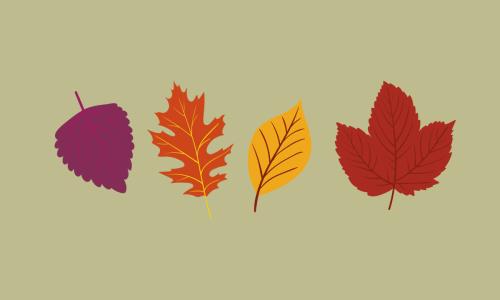 Jaki kolor ma jesień?