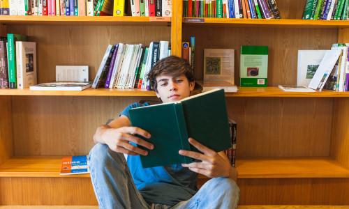 Program pracy z uczniem zdolnym na zajęciach koła bibliologicznego