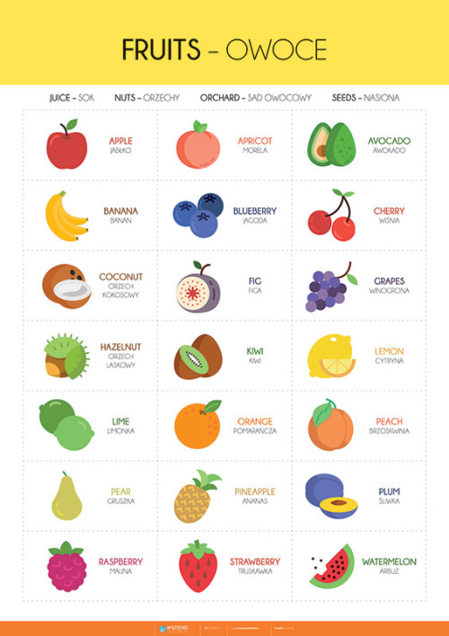 Angielski – słówka – owoce